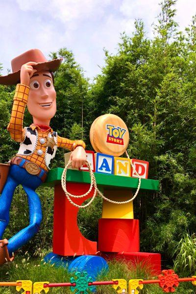 Disney World Highlights 2018
